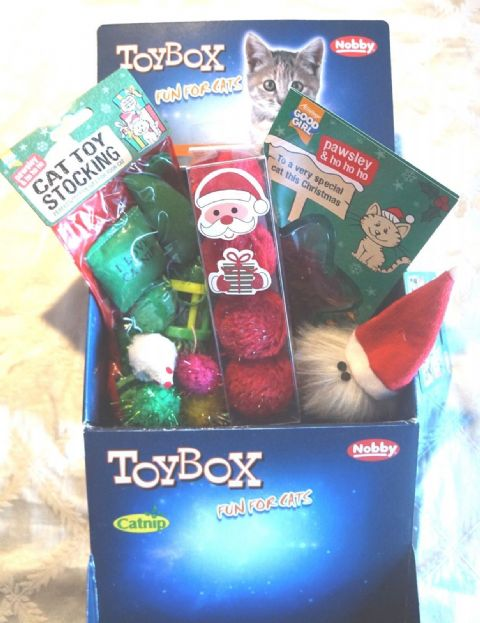 CAT CHRISTMAS TOY BOX WITH CHRISTMAS CATNIP TOYS TOY STOCKING AND TREAT CARD